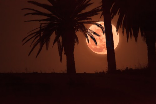 Super Moon Rising over Playa Del Rey