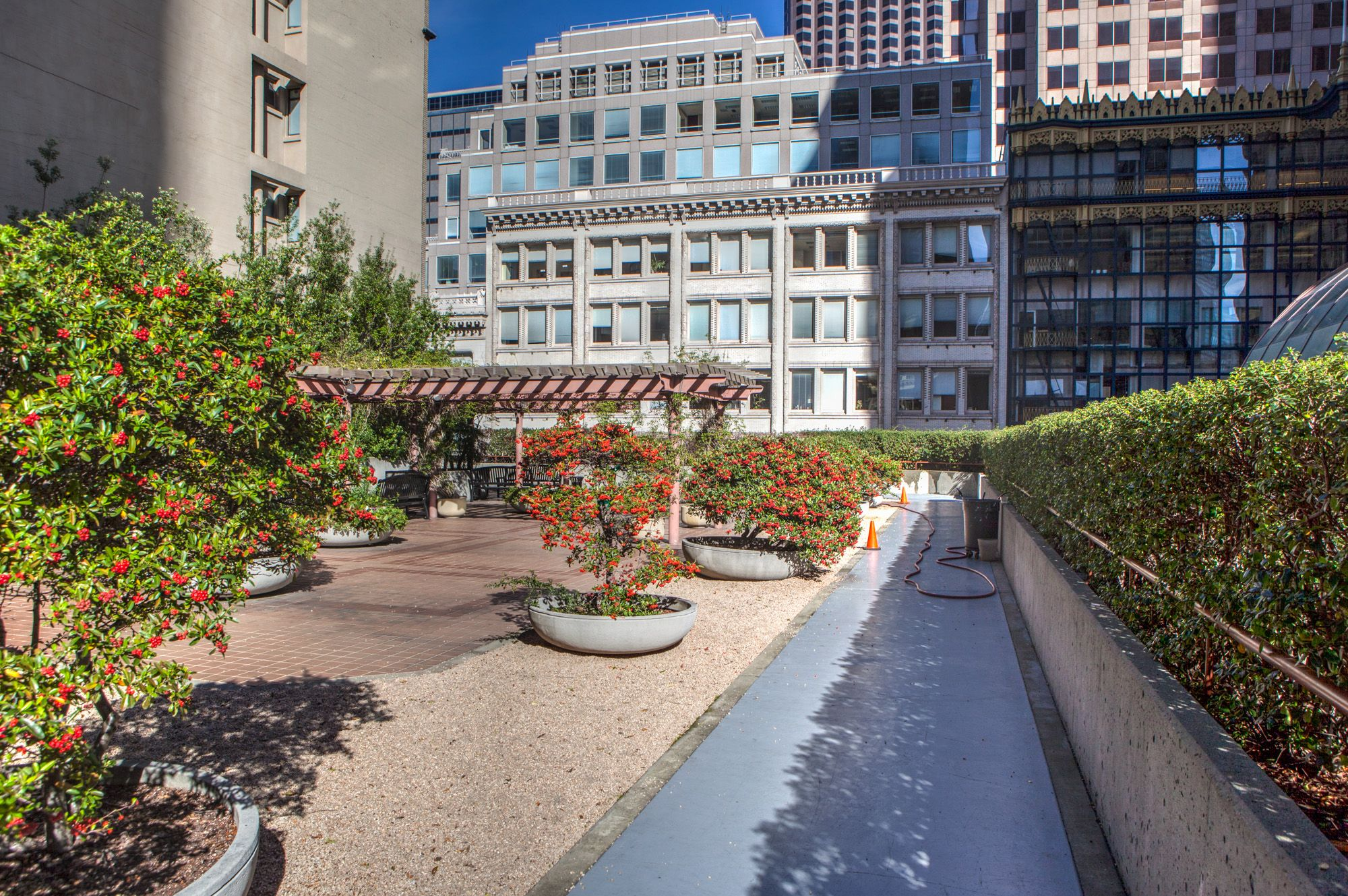 San Francisco S Hidden Rooftop Gardens The Complete List