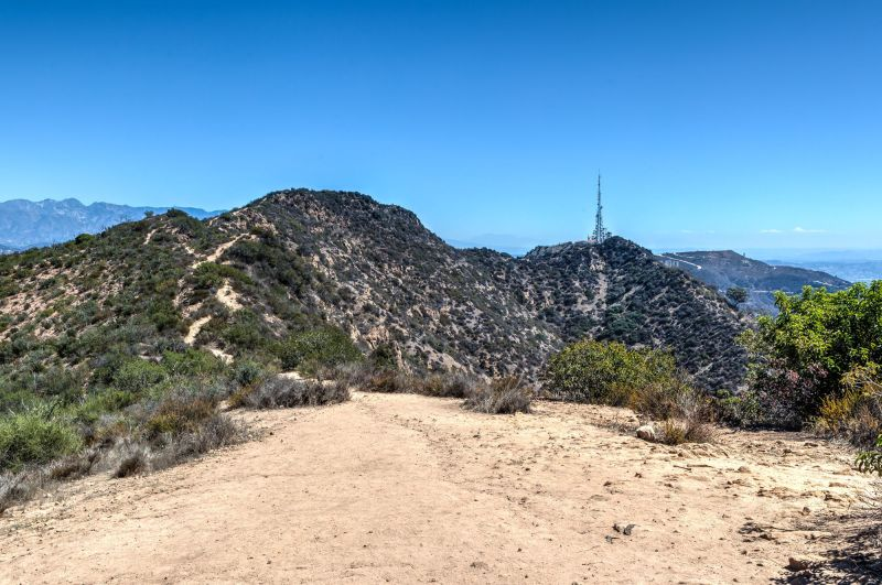 Tree of Life Trail to the Hollywood Sign