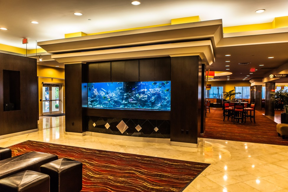 Aquarium in the Lobby