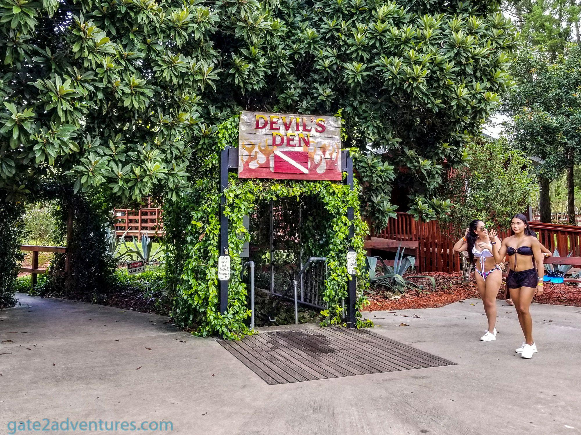 Devil's Den: A Prehistoric Diving Experience in Florida