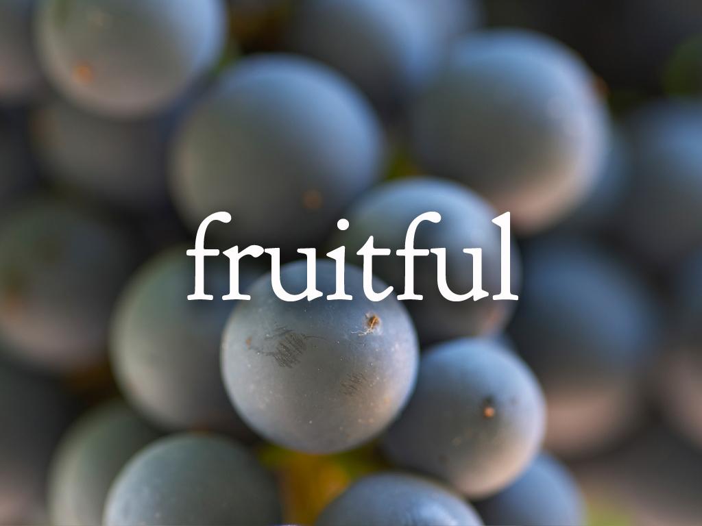 Fruitful Focus Image