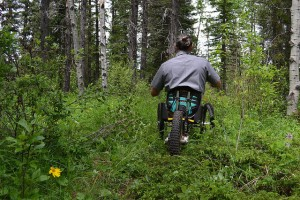 Navigating rough terrain is made easier for limited mobility trail users with the new Park Explorer prototype
