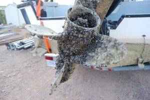 Mussel clogged propeller from Lake Mead, Arizona. Credit: National Park Service