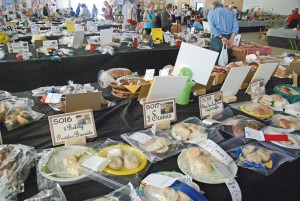 Priddis Fair - baking entries