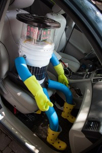 hitchBOT in a car