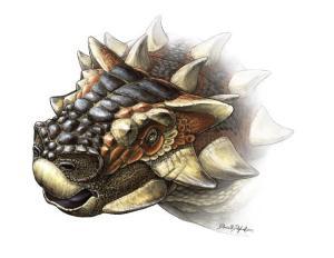 Life restoration of the newly named ankylosaur Zaraapelta nomadis (Illustration: Danielle Dufault)