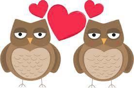 TV School - valentine owls
