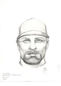 2015-916782_suspect2_1