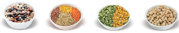samples of pulses in bowls