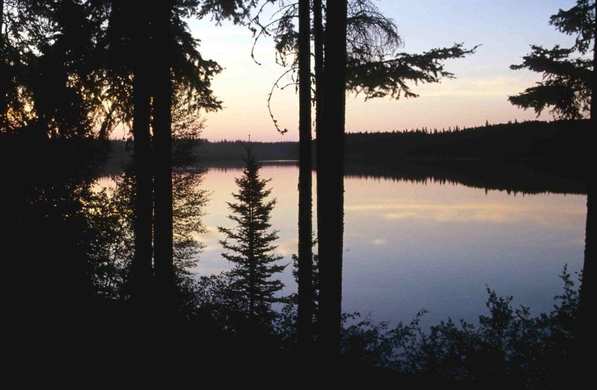 Wood-Buffalo-NP_Pine_Lake_98-07-03