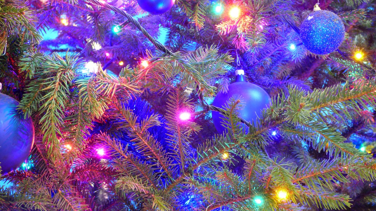 Solutions & Substitutions by Reena: Christmas Tree Sap and ...