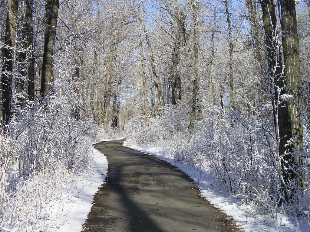 Use Caution on Okotoks Pathways this Winter