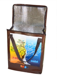 Are Insulated Lunch Bags a Good Idea?