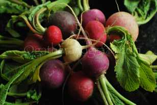 Radishes for Smoked Salmon Salad | Gather and Graze | for The Dinner Party Collective