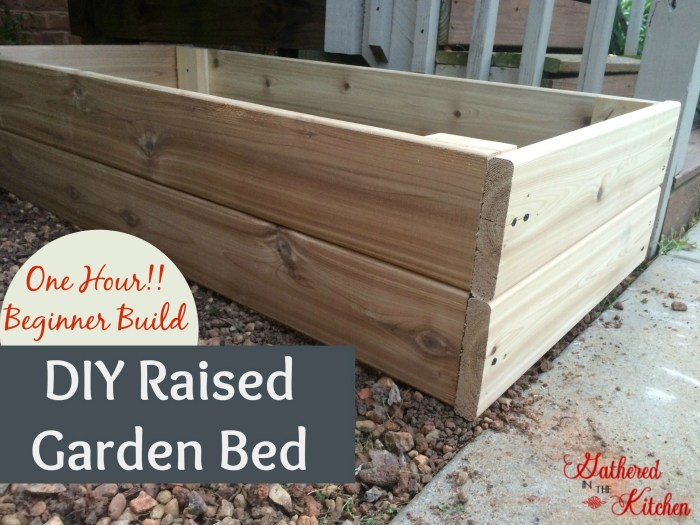 gardenbox14