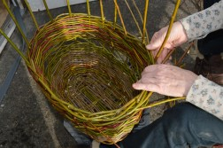 Willow wicker harvest basket
