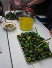 Klamath Tribe- Traditional Plants Program- processing wocas