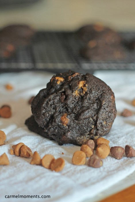 Dark Chocolate Peanut Butter Cookies| gatherforbread.com