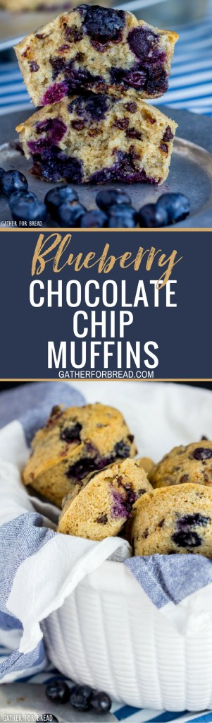 Blueberry Chocolate Chip Muffins - Homemade soft fluffy muffins made with fresh blueberries and chocolate chips. Bake them for breakfast or dessert, a summer favorite.
