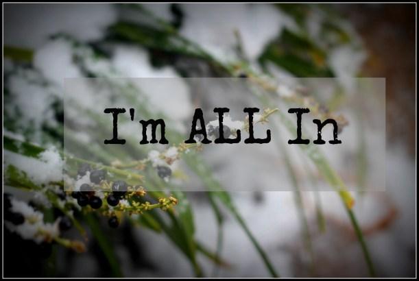 Im ALL In   gatherforbread.com