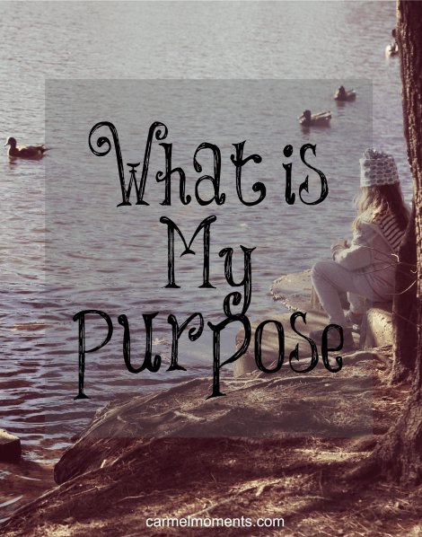 What is My Purpose | Carmel Moments