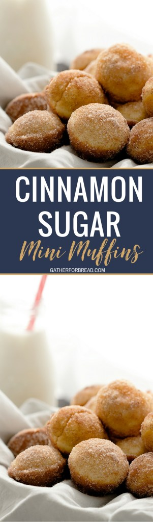 Cinnamon Sugar Mini Muffins - Soft, fluffy bite sized muffins covered with cinnamon and sugar. Perfect for breakfast or dessert. Make these for on the go or quick mornings.