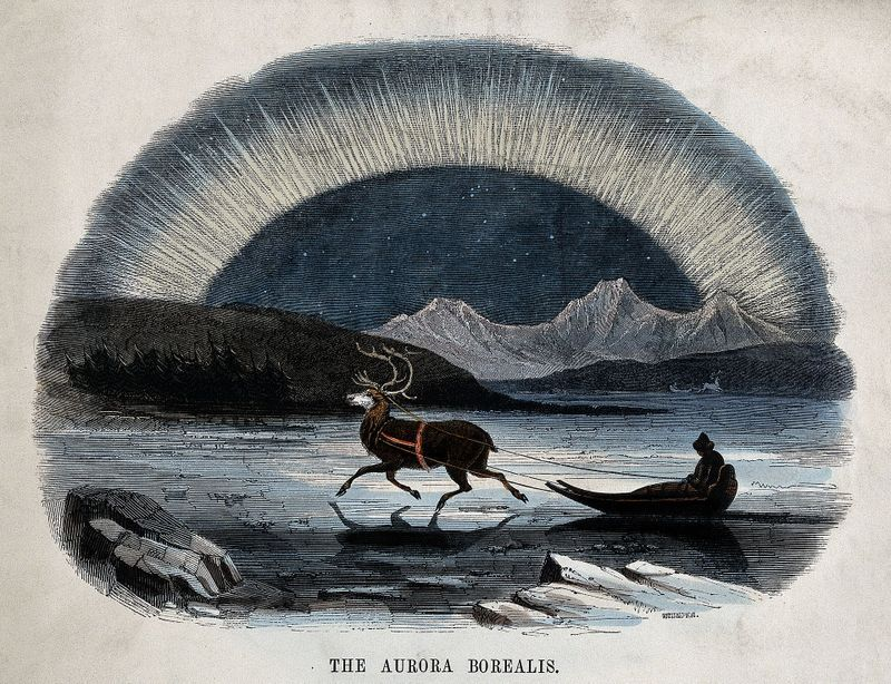 Astronomy;_the_Aurora_Borealis,_with_a_reindeer-drawn_sledge_Wellcome_V0025027-001
