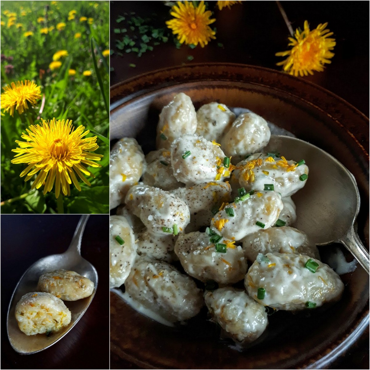 Dandelion Blossom Gnocchi: Golden Dumplings in Garlic Cream Sauce