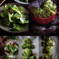 The Flavours of Viriditas: My 30-Day Diary of Glorious Wild Greens