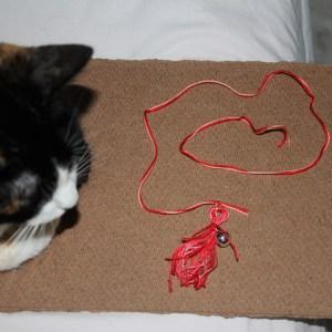 string6