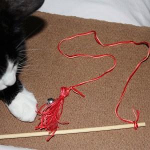 string7