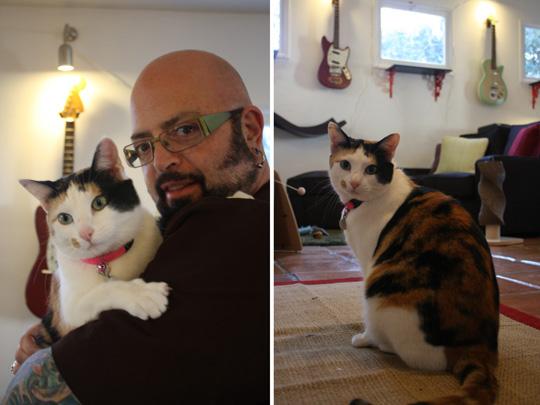 jackson e cat
