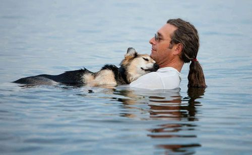 people-doing-amazing-things-for-animals-03175