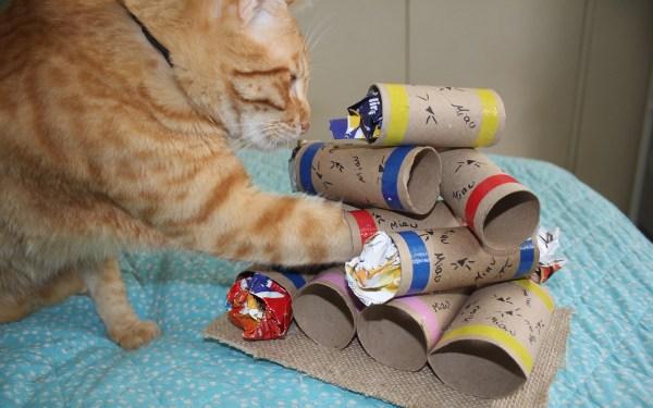 quebra-cabeca-ecologico-para-gatos-faca-voce-mesmo-rolos-papel