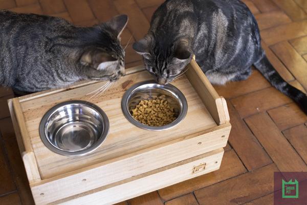 vasilha-inox-melhor-gatos