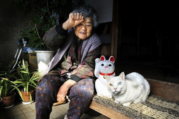 senhora-misao-gatinho-fukumaru-3