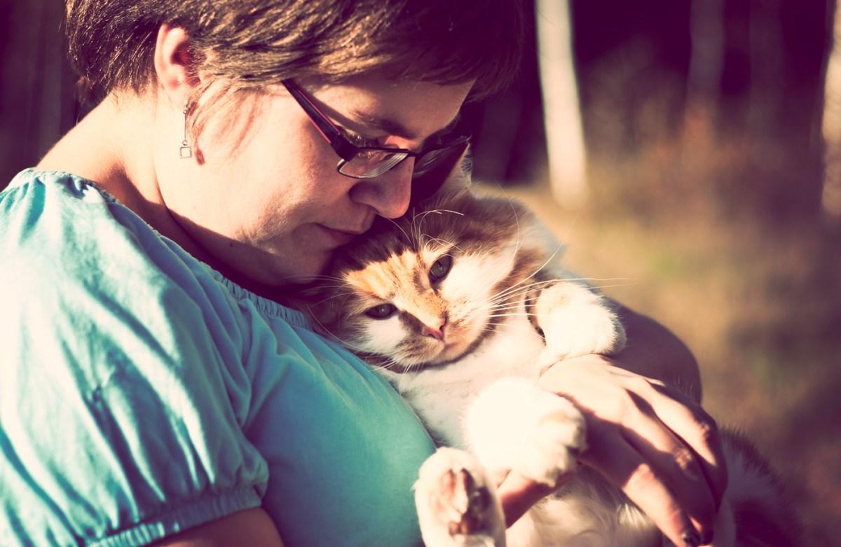 Fortaleça a amizade com seu gato!