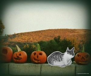 GA_halloween cliche