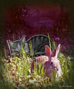 GA_easter bunny