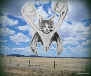 GA_super gato