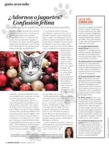 Gato Avocado. Siempre Mujer Magazine. Dec 2014 / Jan 2015