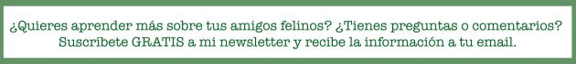 GA_CTA Español