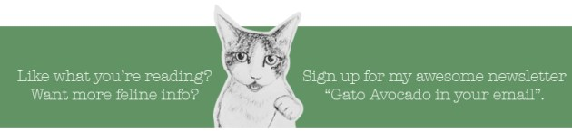 Newsletter CTA New. Gato Comments