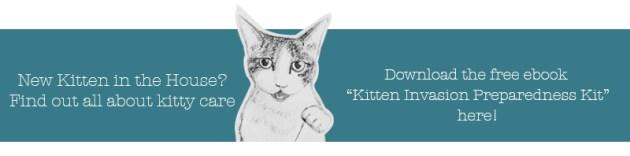 Kitten eBook CTA. Gato Comments