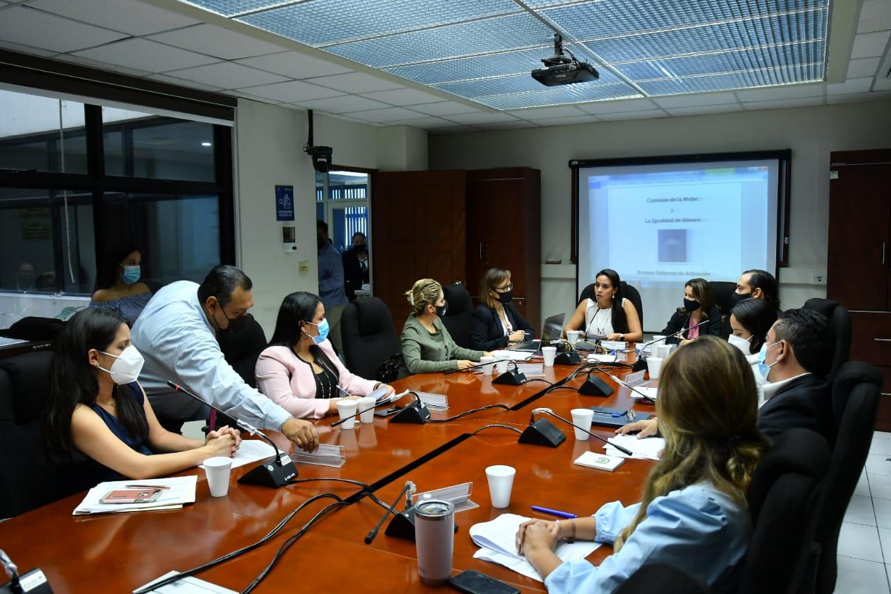 Comisión de la mujer desecha la ley de identidad de género y otras 29 iniciativas heredadas