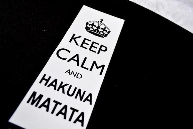 Keep-calm-and-hakuna-matata-GatoQueFlutua_blog_Foto_Debb_Cabral