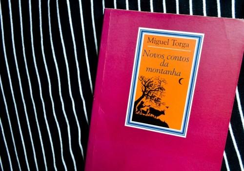 Resenha do livro Novos Contos da Montanha, publicada no blog Gato que Flutua -Foto_Debb_Cabral