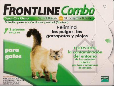 Eliminar las pulgas de tu gato gatos - Tengo pulgas en casa ...
