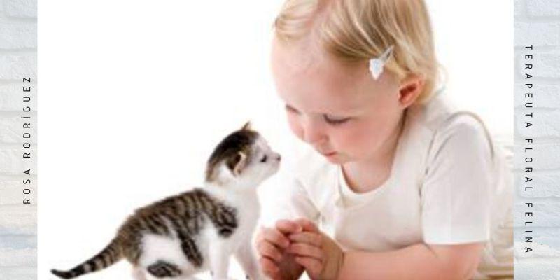 Gatos y niños